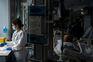 Portugal sem novas mortes por covid-19 e com mais 106 casos