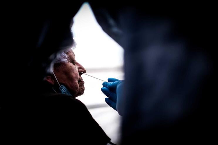 Autarquia pede zaragatoas às autoridades de saúde