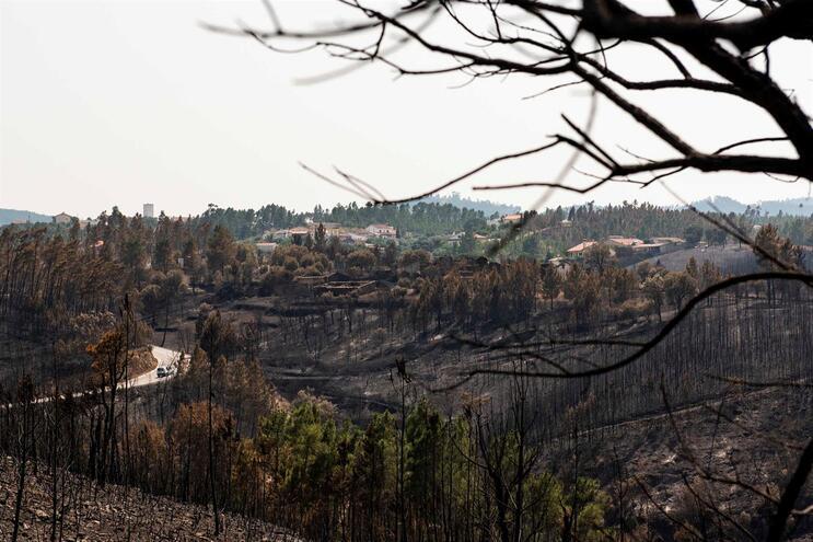 Governo destaca Sertã e Vila de Rei pela declaração de emergência municipal