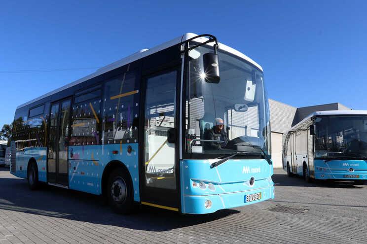 Maré terá mais autocarros a circular, incluindo oito viaturas novas