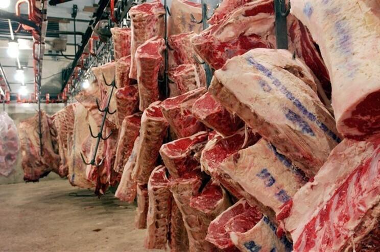 """Eliminar carne de vaca nas cantinas de Coimbra é """"cuidar do futuro"""", diz reitor"""