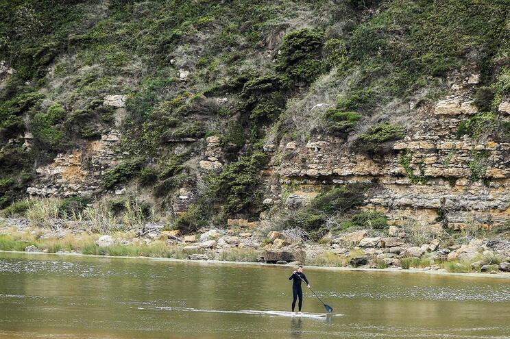 Participantes da Web Summit experimentam Paddle na Praia da Foz do Lizandro na Ericeira