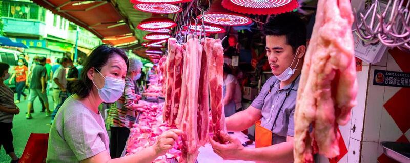Províncias banem comércio e consumo de animais selvagens do país por motivos de saúde pública