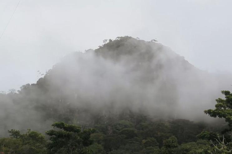 """Antropóloga que demarcou reserva indígena diz-se """"esperançosa"""" após decisão do Vila Galé"""