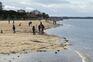 Embrulhos com cocaína dão à costa em França desde outubro