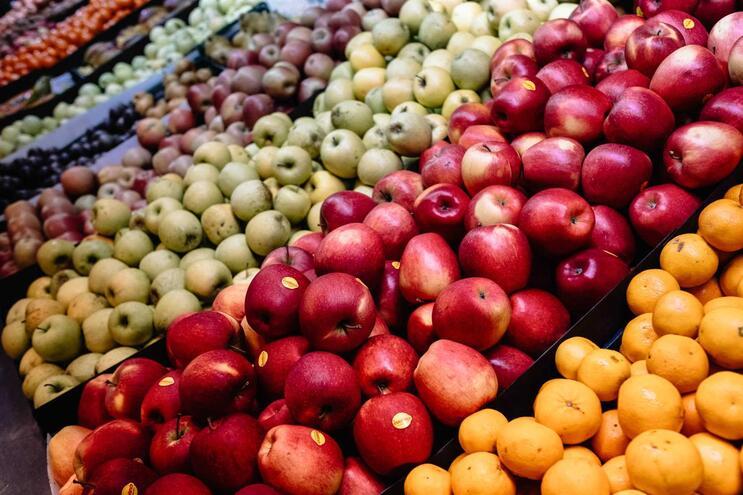 Num dos casos, a dona de uma frutaria pagou cerca de 5500 euros por um empréstimo de 500 euros