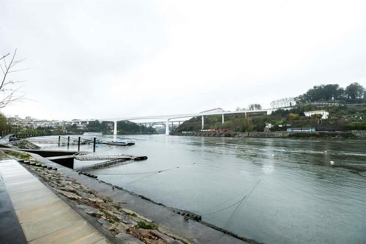 APDL diz que nova travessia sobre o Douro não pode ser mais baixa que Ponte Luís I