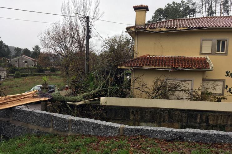 Queda de árvore causa estragos em casa de emigrante em Fafe