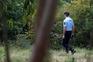 Homem cultivava canábis com dois metros de altura em Castelo Branco