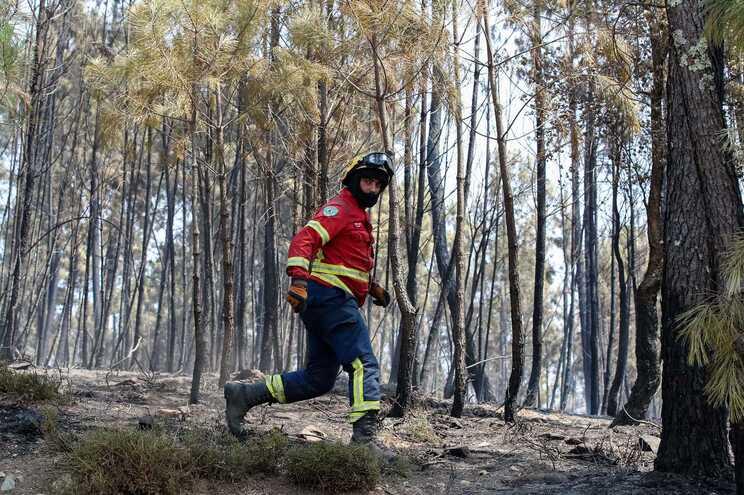 Portugal em situação de alerta devido ao risco de incêndio