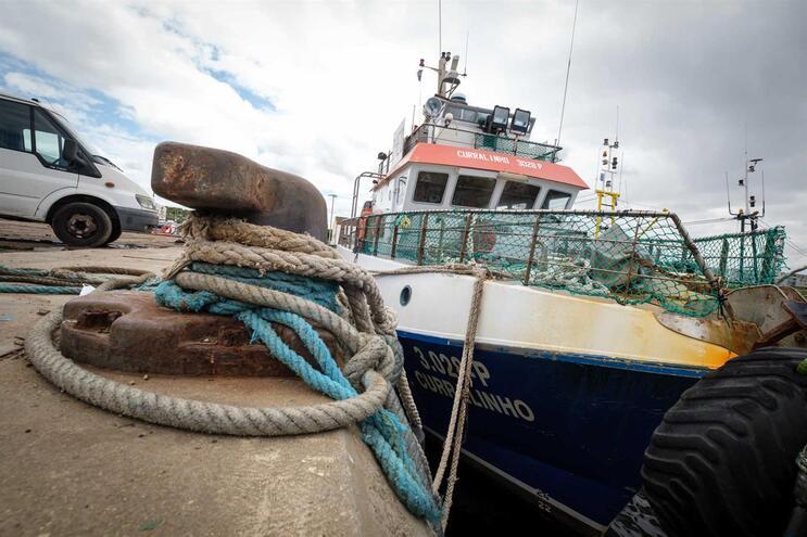Dois mil pescadores começam a ser testados à covid-19 na sexta-feira