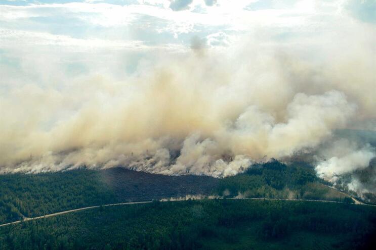 Suécia enfrenta vaga de incêndios