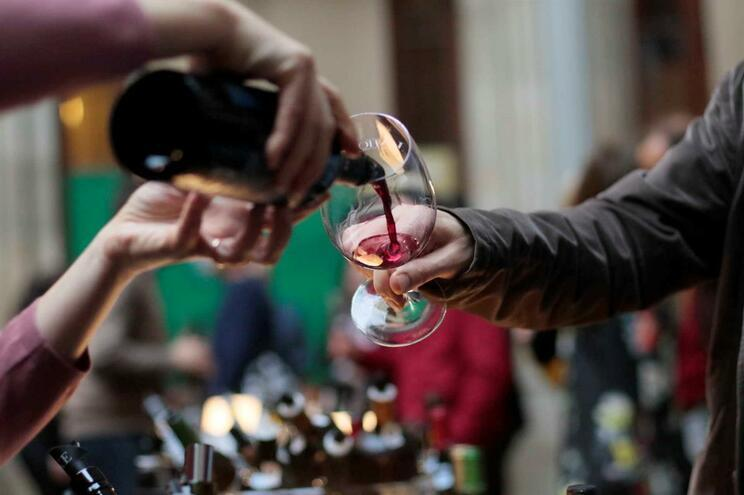 Produção de vinho aumentou mas ficou abaixo das previsões