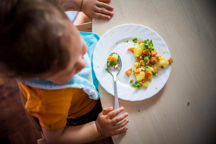 DGS prepara manual de alimentação saudável para creches