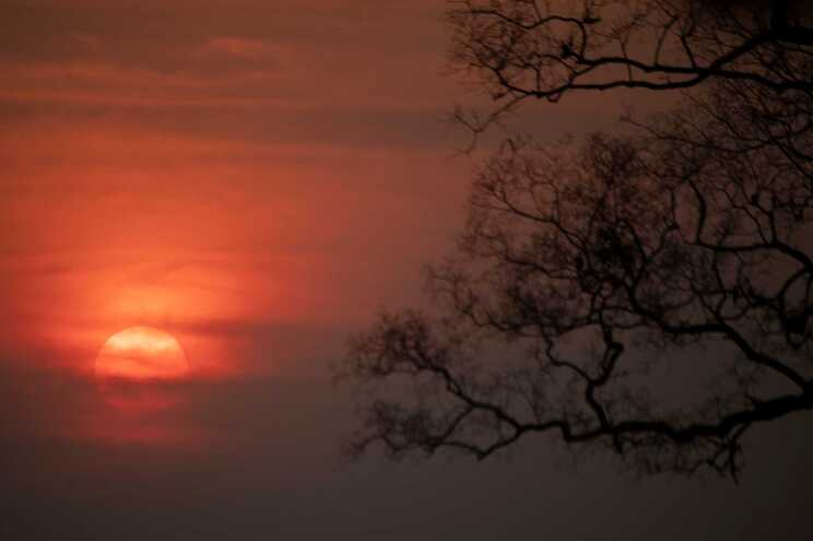 A Amazónia brasileira registou, entre janeiro e setembro deste ano, 76.030 queimadas