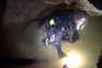 Revelados detalhes do resgate de crianças presas em gruta na Tailândia