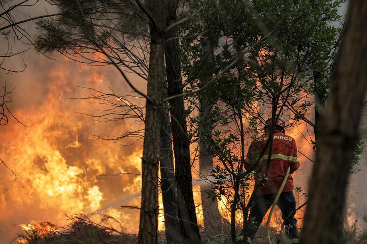 Portugal em alerta: máximas de até 39 graus e risco de incêndio em alta