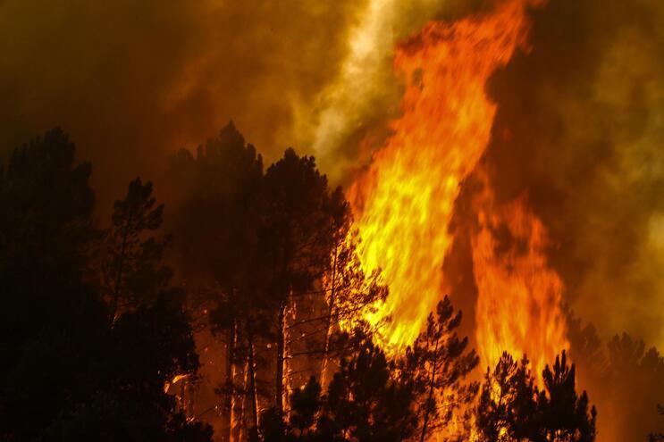 Incêndios adiam início das aulas em Oleiros