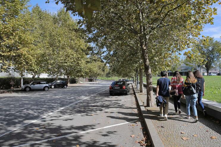 Autocarros vão funcionar na zona da Asprela, no Porto