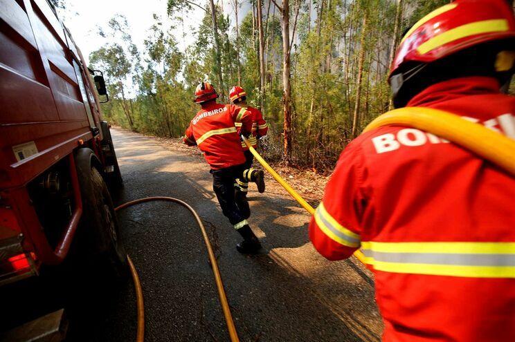 Vários concelhos com risco de incêndio