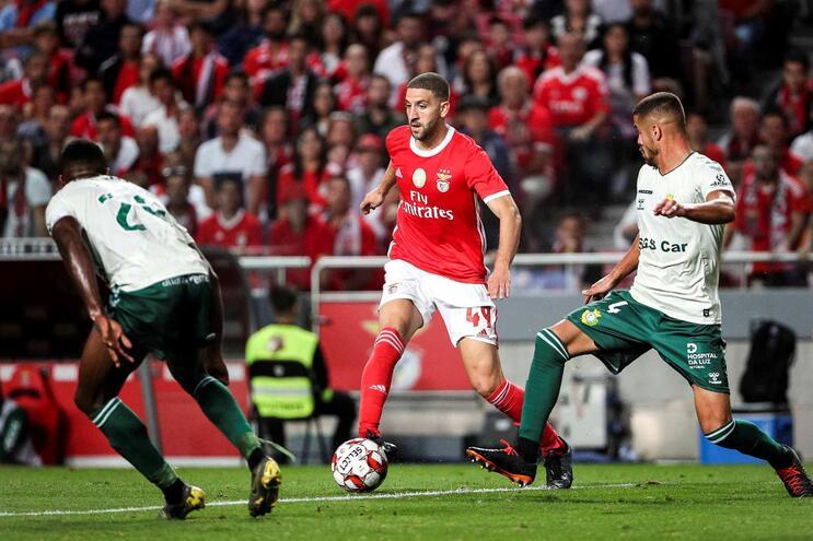 """Adel Taarabt: """"Nunca trabalhei tanto como no Benfica"""""""