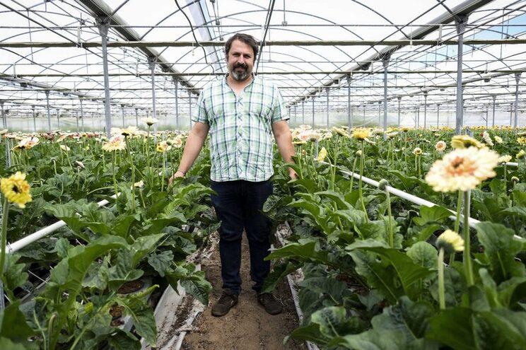 Rui Algarvio, vice-presidente da Associação Portuguesa de Produtores de Plantas e Flores Naturais (APPPFN)