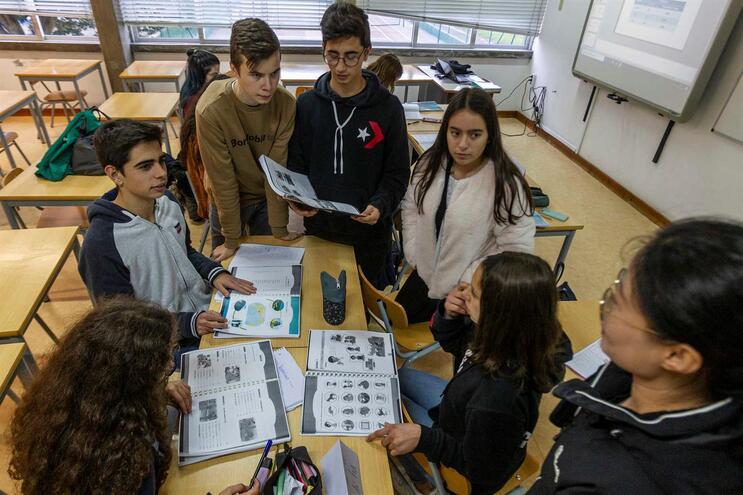 Alunos da escola Adolfo Portela, em Águeda, aprendem mandarim com a professora Min Yang