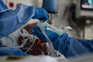 """Pneumologistas alertam para doentes internados em """"condições impróprias"""""""