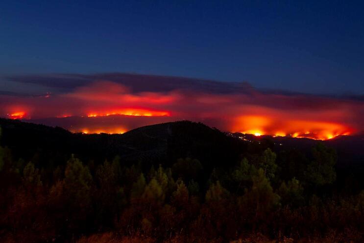Forças Armadas ajudam no combate a incêndios na Sertã e Vila de Rei