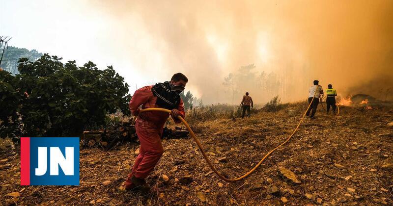 Bombeiros combatem reacendimentos de fogo em Mação