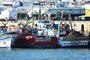 Depois da escassez, covid-19 pode criar problemas de excesso de sardinha aos pescadores