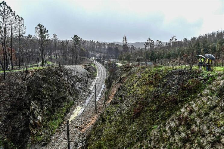 Retomada circulação de comboios entre Carregal do Sal e Santa Comba Dão