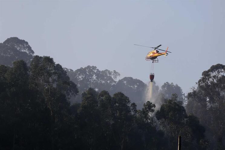 Combate a incêndio em Fátima em fase de resolução