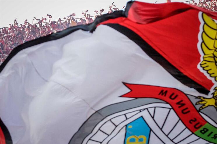 Ministério Público quer levar SAD do Benfica a julgamento no e-Toupeira