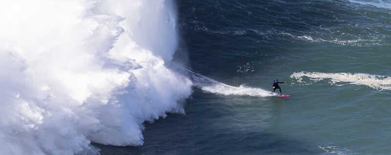 Ondas da Nazaré não desiludiram surfistas que vieram de todo o Mundo
