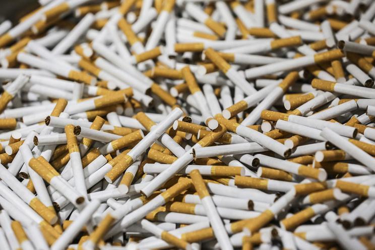 Rede dedicada ao tráfico em larga escala de drogas e cigarros, assassínios e branqueamento de capitais