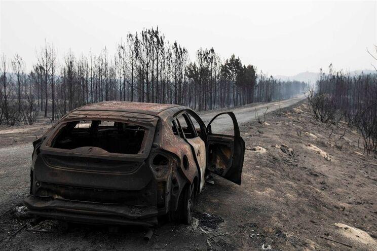 Mulher de 69 anos é a única acusada do fogo no Pinhal de Leiria