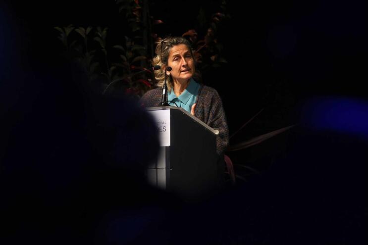 Ana Abrunhosa diz que autarquias têm de ter tempo para capacitar-se em diferentes áreas