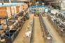Covid-19 parou 38% das empresas do distrito de Aveiro