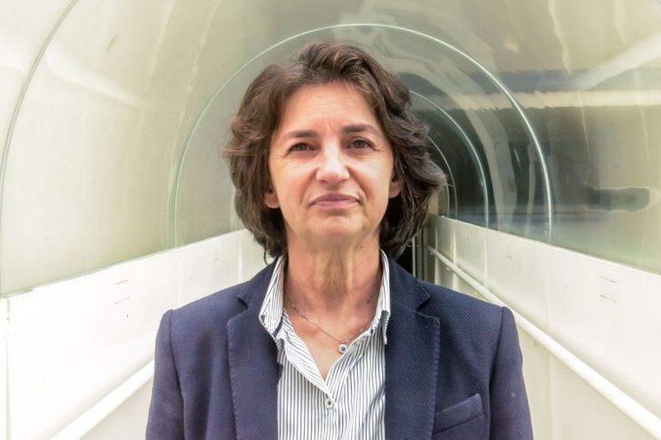 Anabela Cordeiro lidera a investigação