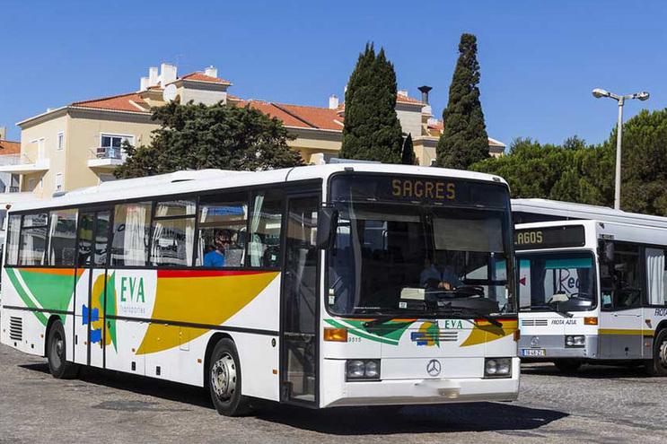Empresa EVA vai assegurar serviço público de transportes no Algarve