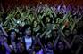 Espectadores podem pedir o reembolso dos bilhetes em caso de cancelamento de concerto