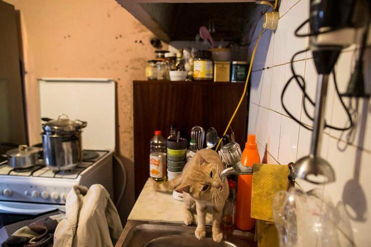São precisas cinco gerações para se sair da pobreza em Portugal