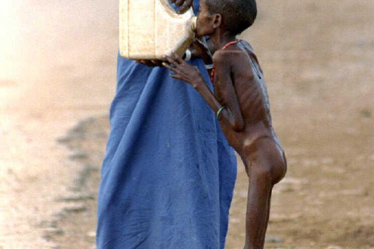 """""""Seca desastrosa"""" ameaça 2,2 milhões de somalis com fome severa, diz FAO"""