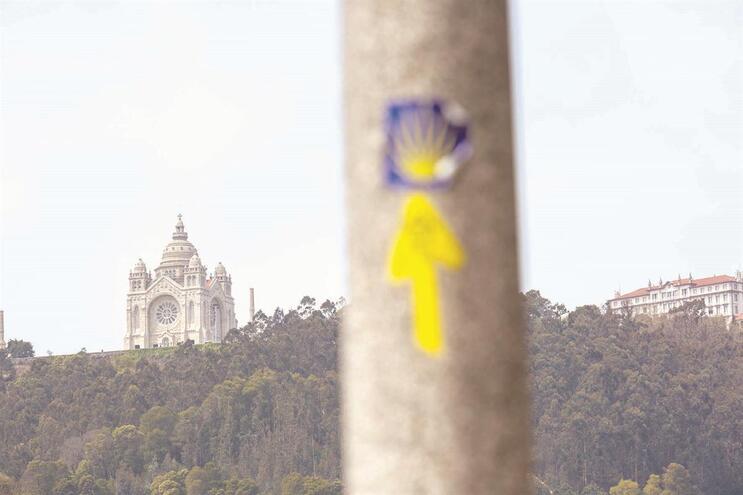 Idoso raptou peregrina dos Caminhos de Santiago para a violar