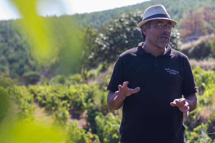 Carlos Gracias vai produzir o primeiro vinho regional do Algarve de Monchique
