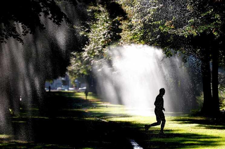 Corpo da vítima foi encontrado por populares num parque a norte de Berlim