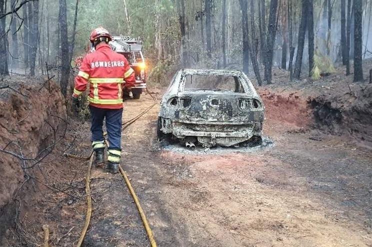 As chamas alastraram à área florestal
