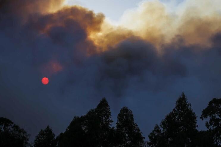 Mais de 100 concelhos de 13 distritos em risco máximo de incêndio