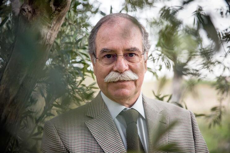 Eduardo Oliveira, presidente da Confederação dos Agricultores de Portugal